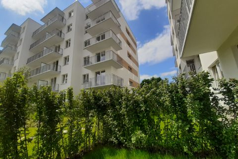 widok z jednego z ogródków Comfort City Bursztyn czerwiec 2020