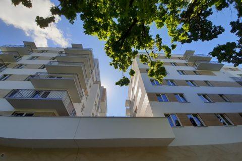widok spod dęba;-) na budynek Comfort City Bursztyn czerwiec 2020