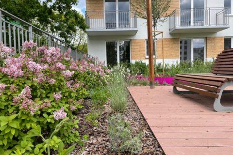 Comfort City Ametyst zielone patio maj 2021