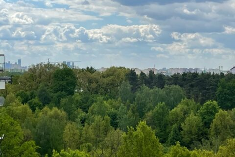 Comfort City Ametyst widok z balkonu, maj 2021