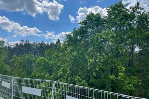 Comfort City Perła widok z balkonów na park leśny maj 2021
